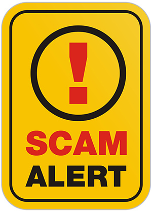 spot seo email scams
